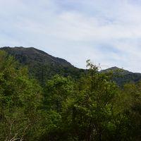 四国徳島の剣山 (見ノ越〜リフト利用〜山頂へ〜♪) (60)