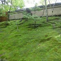 世界遺産「古都京都の文化財」(西芳寺)