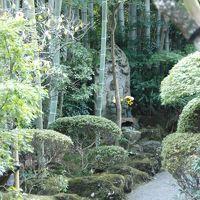 鎌倉を訪れてみました~新旧Kamakura  日本の古都