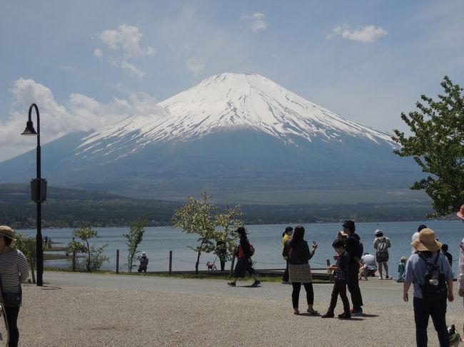 カングージャンボリー2014(3)の続きです。雲がかかっていた富士山も、次第に顔を見せ始めました。<br /><br />なお、このアルバムは、ガンまる日記:カングージャンボリー2014(4)[http://marumi.tea-nifty.com/gammaru/2015/05/post-d057.html]<br />とリンクしています。詳細については、そちらをご覧くだされば幸いです。