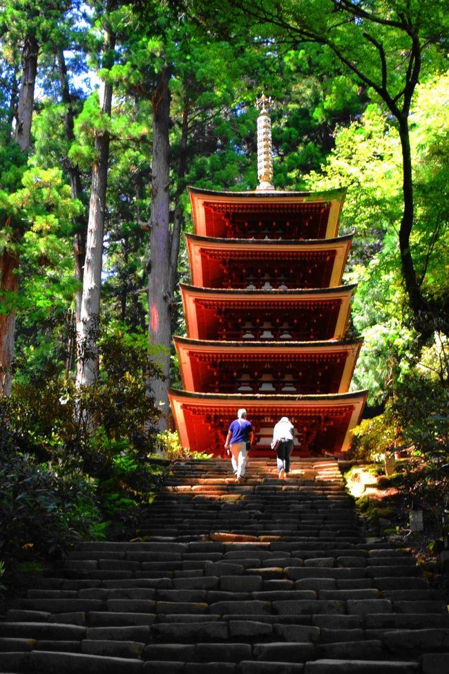 高野山ツアー・旅行|クラブツーリズム