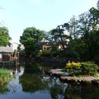 渋谷駅から徒歩12分で水車のある公園(渋谷区立鍋島松濤公園)を訪ねて