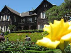 旧古河庭園の薔薇と六義園の紫陽花