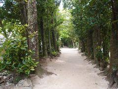 2015 沖縄旅行 2(2日目 ちゅら海、フクギ並木、)