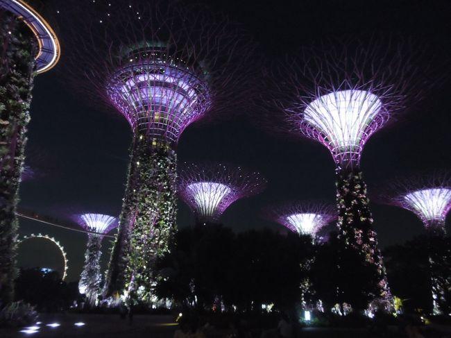 初バリ島&シンガポール旅行@2015GW(9)