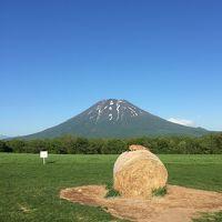 晴天に恵まれた初夏の北海道旅行