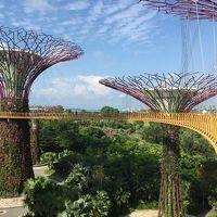 2015年バリ島に行くついでにちょっと寄り道シンガポール旅行