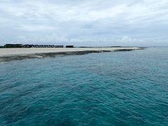 ウミガメと一緒に泳げたナガンヌ島と那覇散策