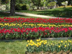 浜松フラワーパークと舘山寺温泉 2015年5月 Hamamatu Flower park &Kanzanji Onsen