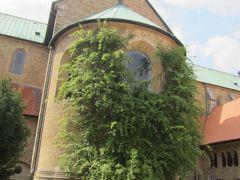 木組みの家に魅せられて…なんとなくメルヘン街道を南下③ヒルデスハイム~世界遺産のマリア大聖堂にある「1000年のバラ」