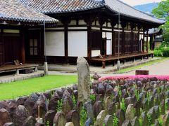 奈良6/8 元興寺 本堂(国宝)に残る古瓦 ☆五重小塔は奈良時代の作