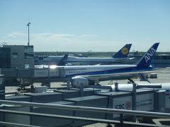 【5/6】2015GWはモルドバ・ウクライナ・ベラルーシとおまけのカイロ・イスタンブール8日間の旅(8)フランクフルト経由最後はANAのビジネスクラスで帰国