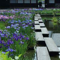 静岡 花めぐり〜加茂荘花鳥園、香勝寺、極楽寺