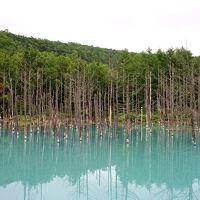 2007年夏の北海道旅行は道北ぐるっと一周り(その4、原付で大雪山の中腹、白金温泉へ)