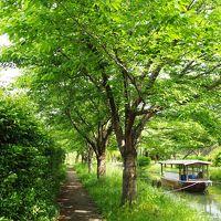 <高野山開創1200年&関西世界遺産旅・8>京都・歴史と名酒のまち・伏見「新緑の十石舟」&「酒蔵巡り」