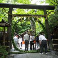 青もみじを求めて、嵐山から東福寺&うな丼を巡る無計画旅 その1