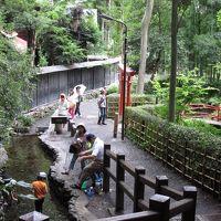 2014年7月20日:お鷹の道&武蔵国分寺公園