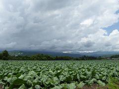 初夏の軽井沢×嬬恋 優雅なバカンス♪ Vol10 ☆嬬恋村:湯の丸高原から山を越えて蕎麦ランチ♪