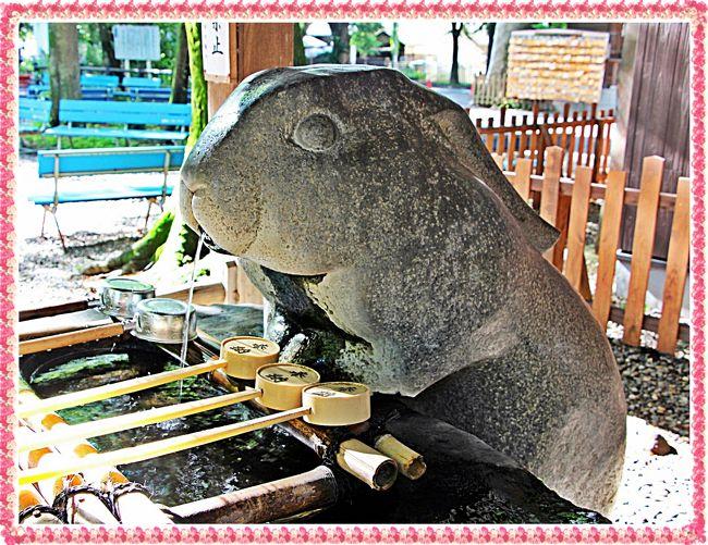 日本の神社と言えば、朱の大鳥居に阿吽の狛犬…が、真っ先に頭に浮かんでくる。<br />でも、狭くても、歩けば広い日本。<br />鳥居も無ければ狛犬もいない、そんな神社も存在する。<br /><br />古来、狛犬の役目は神社に邪気が入り込まない為の監視役と云われている。<br />狛犬がいなかったら、神社は魔の巣窟に…。<br />百鬼夜行が神社に入り込み、神の社が妖の社に…。<br /><br />しかし、そんなに心配することもない。<br />神社を守ることのできる動物は狛犬だけではない。<br />虎やネズミ、牛にウサギ…。<br />犬以外の生き物にだって、古の昔から伝わるパワーがある。<br /><br />今回、私が訪れた調(つき)神社もそんな社の一つ。<br />月うさぎに守られた神社を旅してきた。