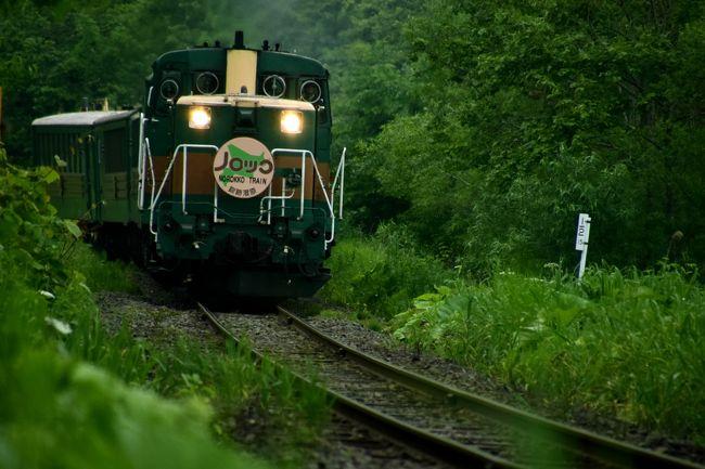 オリオンツアーが企画している「道東フリーパス」を利用して、初夏の北海道、道東地方を巡るローカル線の旅を満喫してきました。<br /><br />--<br />初夏の北海道、道東地方を巡る旅 ~新緑の釧路湿原に訪れてみた~<br />http://4travel.jp/travelogue/11027760<br /><br />初夏の北海道、道東地方を巡る旅 ~オホーツク海周辺に咲き広がるルピナスを見に訪れてみた~<br />http://4travel.jp/travelogue/11027979<br /><br />初夏の北海道、道東地方を巡る旅 ~オホーツク海周辺に咲き広がるエゾスカシユリやエゾキスゲを見に訪れてみた~<br />http://4travel.jp/travelogue/11028146<br /><br />初夏の北海道、道東地方を巡る旅 ~日本最東端の地と最東端の地に広がる絶景を見に訪れてみた~<br />http://4travel.jp/travelogue/11028559<br /><br />初夏の北海道、道東地方を巡る旅 ~新緑の厚岸湖・別寒辺牛湿原に訪れてみた~<br />http://4travel.jp/travelogue/11029495<br />--<br /><br />JR釧網本線沿線に広がる新緑の釧路湿原の風景を探しに細岡駅~釧路湿原駅周辺を散策してみました。