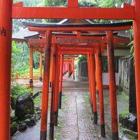 梅雨の街歩き 根津神社とパンダの誕生日