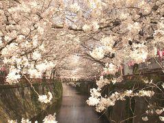 ★LCCで週末東京旅★2015.3.28~3.29