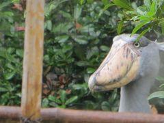 梅雨の街歩き 上野公園の中にある西洋美術館と動物園