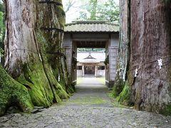 奈良時代に植えられたと云う伝説の夫婦杉に囲まれた蛭子神社参拝