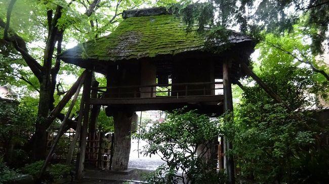 梅雨の最中、京都行としました。主目的は山端平八茶屋の「釜風呂」と懐石料理。梅雨と暑い夏を爽やかな香りで乗り切ろうと「山田松香木店」に香りを求め、日常使いの乾燥湯波を「湯波半」で求めようとする今回の京都行、イノダのコーヒーでも入れば完璧だったが、雨中故諦めました。<br /> 天平年間に京都と福井を結ぶ鯖街道の京都側の起点に開店した「平八茶屋」は創業430年。関ヶ原の合戦前には、既に開店していた。私の通う古からのお店としては吉野の弥助寿司に次ぐ、因みにこちらは創業800年です。<br /> 騎牛門と云うアンチークな門をくぐり庭に入ると、正面が団体客用の二階建ての部屋、右には例のかま風呂がある。近年男女別に風呂が追加されるまでは、一客のみの貸し切りであった。その風呂の前を奥に進むと600坪の庭園の小川と高野川に挟まれるように小部屋が並びます。我々も、その一つ「つつじ」の間に。<br /> 手軽な昼懐石と云っても、懐石の習いは全てまとめ上げられていて、前菜から麦とろ御飯まで一切手を抜かないのが京料理を代表する21代と22代の伝統を引き継ぐ親子料理長。よくテレビでも拝見する。季節ものの鱧も何種類か出ていたが、この期は鮎。強火の遠火で時間をかけて焼かれた小ぶりの鮎は頭まで戴ける、若女将が嬉しそうに「完食ですね・・」と皿を下げられた。<br /> かま風呂は、赤土で作られたドームの中に筵を敷いた上に寝転ぶ。枕は陶器製で、冷やっとして気持ちが良い。サウナほど暑くなく床全体から温もるので、腰の痛みなど直ぐに治る。暑いと感じたら、隣に更湯があるので汗を流す。何回か繰り返す様を、床にはめられたガラス越しに鯉が下から眺めているのに気づく。何とも贅沢な設えだ。<br /> 大凡二時間半、すっかり癒やされて鯖街道を市内へと向かう。御所の西、室町通り下立売り下ル勘解由小路町の「山田松香木店」にて匂い袋の交換用品と香木、線香を買う。ここの店主は、NHKの正倉院展の解説番組で「香木」を熱く語っておられた。寛政年間創業ですから200年以上です。<br /> 香木店から御所の真南、麩屋町通りにあるのが「湯波半」。京湯波を作って300年近い。時間が時間だけに、おられたのは女将さんだけ。くみ上げて最後のそこに溜まったものを乾燥させたのを「甘湯波」と云いますが、素揚げにしても戻しても美味しい。甘湯波と、今宵の造り湯波を求めます。<br />   さて、本日足早に京の町で遊びました。創業430年から一番新しい店で200年以上という京都の伝統を受け継ぎ、引き継ごうとされている各お店には活気と暑い熱意を感じさせられる。そんな意気込みを自身へのエネルギーに戴いた様な気がする駆け足旅でした。