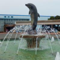 南知多ビーチランドの生きもの施設を見てきました