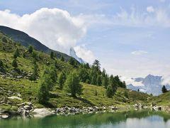 スイスアルプス 大自然と鉄道の旅 (7) リッフェルアルプ~ブラウヘルト 花畑ハイキング
