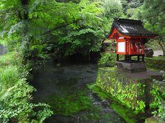 鹿児島5日間③はやとの風に乗って霧島神宮、神秘的な御手洗川