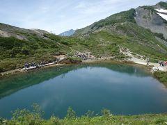 2015・7・初夏の白馬、岩岳、八方池