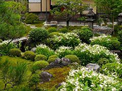 2015.7京都出張旅行2-建仁寺,両足院で半夏生を見る,西来院で書道展