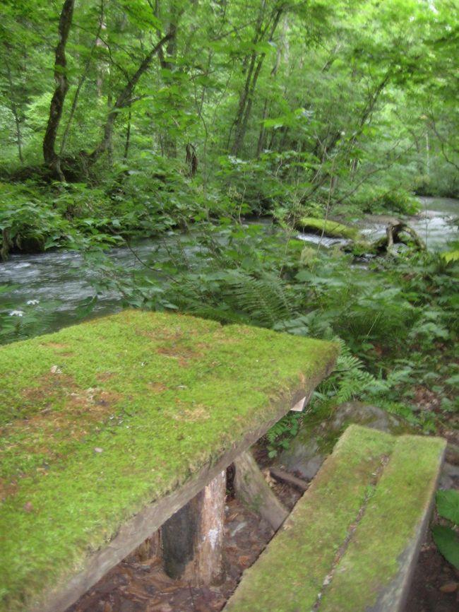 6月の札幌でプチ旅行にハマったえりんぎ家(´・ω・`)<br />7月は青森県の奥入瀬渓流へ。<br /><br />ガリヲが夏休み取れないかもとの由にて、<br />行けるときに旅に出ようというコンタンです。<br /><br />〜ある日の晩〜<br />ガリヲ:次どこ行く?<br />    秋田とか?<br />えりんぎ:え〜。 ○○がいいよ。いや△△<br />(中略)<br />えりんぎ:奥入瀬は?<br />ガリヲ:それだっ!!<br /><br />2015年7月16日 はやぶさ3号で八戸へ<br />2015年7月17日 はやぶさ24号、やまびこ148号で帰宅<br />        (仙台乗り換え)<br />星野リゾート 奥入瀬渓流ホテル宿泊<br /><br />※ガリヲ=えりんぎ旦那