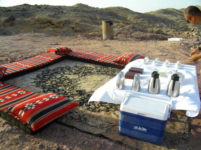 さんざん悩んで決めた現地でのアクティビティ<br />・Anantara Qasr al Sarab Desert Resort<br />では、サンライズラクダ乗りCamelTrack 305Dh++で、2人で 23000円  <br />・Anantara Desert Islands Resort &amp; Spa<br />では、Wildlife drive 250++で 2人で19000円<br /><br />高いが...どっちも最高でしたっ!<br />