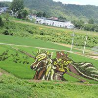 小野川温泉から見る田んぼアートと、花火に挑戦。
