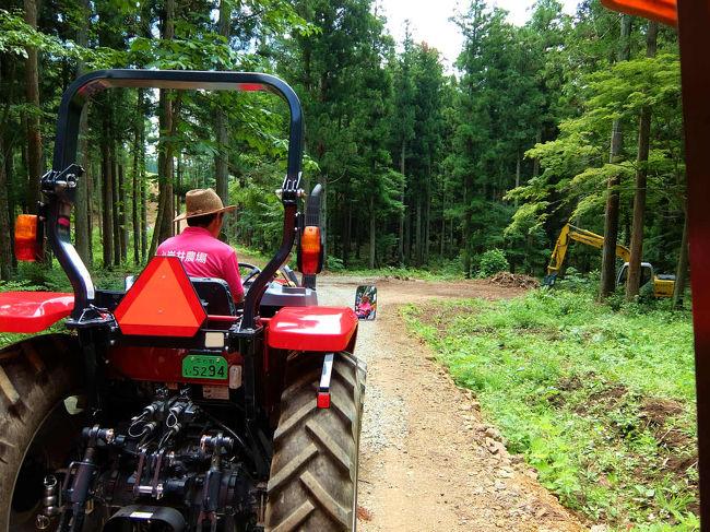 トラクターで農場を見学コース <br /><br />かなりの期待をもって乗り込みます。<br /><br />小岩井農場HP<br />http://www.koiwai.co.jp/