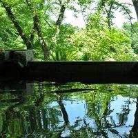 深緑の別邸仙寿庵で過ごす☆Birthday&復活旅行♪(2日目)