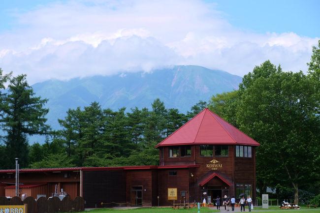 思っていた以上の成果、、<br /><br /> 素晴らしい 小岩井農場訪問でした。<br /><br />是非 もう一度訪問したい気持ちにもなりました<br /><br /> 蛍の飛び交う頃にでも<br /><br />小岩井農場<br />http://www.koiwai.co.jp/