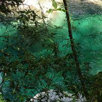 エメラルドグリーンの面河渓。ノルディックウォーキングしてきました。