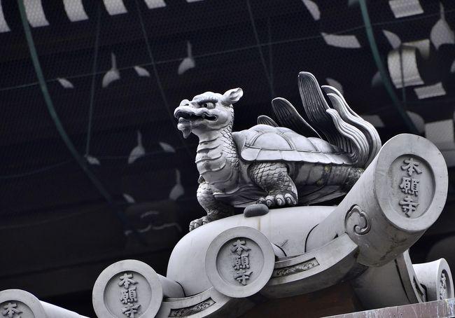東本願寺は、下京区烏丸七条にある真宗大谷派の本山の通称で、正式名は「真宗本廟」です。西本願寺の東に位置するため、「東本願寺」と通称されています。他に「お東さん」とも通称され、「猫の集まるお寺」としても有名です。狛犬のように正座する猫たちが激写されて話題になたのは記憶に新しいのですが、修復工事中かつ猛暑日ということもあり、猫たちもどこかに身を潜めていました。<br />江戸時代に4度もの火災に遭ったために西本願寺に比べて歴史的建造物が少なく、一見すると見劣りしてしまうのですが、建築や障壁画等は明治時代の技術の粋を集めて復元、あるいは制作された珠玉の作品群と言えます。特に、「菊の門」は、西本願寺の煌びやかな「唐門」に対峙する味わい深い建造物で、侘び寂びの風情を湛えています。オリジナルを忠実に復元した意匠と思われますが、もし焼けていなかったら国宝級だったのではと惜しまれます。<br />因みに、火災の多さから「火出し本願寺」と揶揄されているようですが、調べてみると東本願寺が火元となったのは1823(文政6)年の火災だけのようです。<br />境内案内図<br />http://www.higashihonganji.or.jp/about/guide/