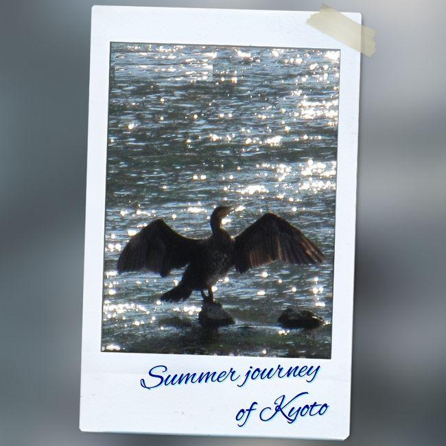京の夏の旅 <洛西編> 2015年 8月