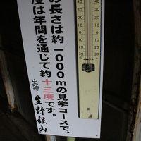 2015年8月 島根・鳥取・兵庫旅行 第四日目-⑪ おもしろ昆虫化石館~生野銀山
