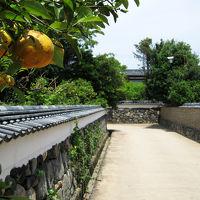夏みかん香る城下町、長州・萩。