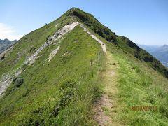 2015年オーストリア・イタリアの旅 №4  *** Wiedersberger Horn へ***