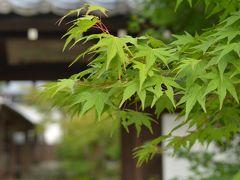 < 女子一人旅・京都> 1泊2日 真夏の京都で心を浄化 <1/3>