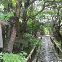 夏の京都(2015年7月)