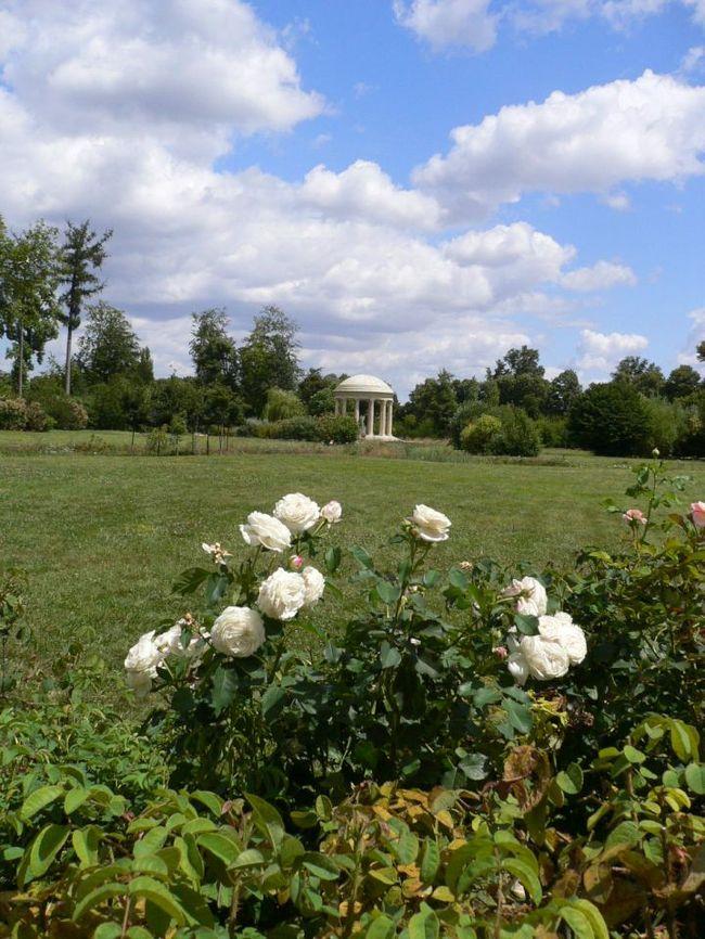 【振り返り旅行記】2009年の夏休みに訪れたフランス編です。<br />ルックJTBの「パリから行く小さな旅9」に参加しました。<br /><br /><br />4日目、モンサンミッシェル観光を終えてベルサイユへ到着。翌日ベルサイユ宮殿、プチトリアノンをまわります。<br /><br />それにしても、ベルサイユは広かったー。かなり歩きますヨ!!
