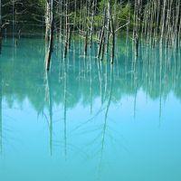 青い池と旭岳ロープウェイ